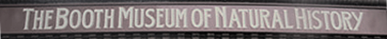 Booth Museum