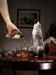 brewdog_taxidermy211_534 good