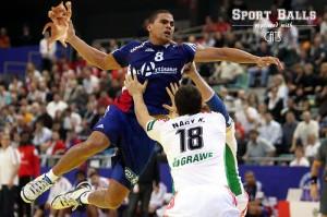 handball cat