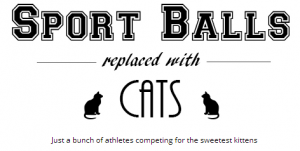 Click to view Sport Balls replaced by cats