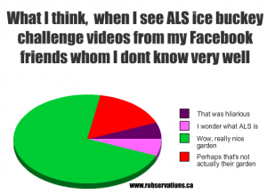 ALS ice bucket challenge graph